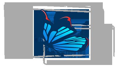 Websitez.cz | Tvorba webu - Ilustrace motýla